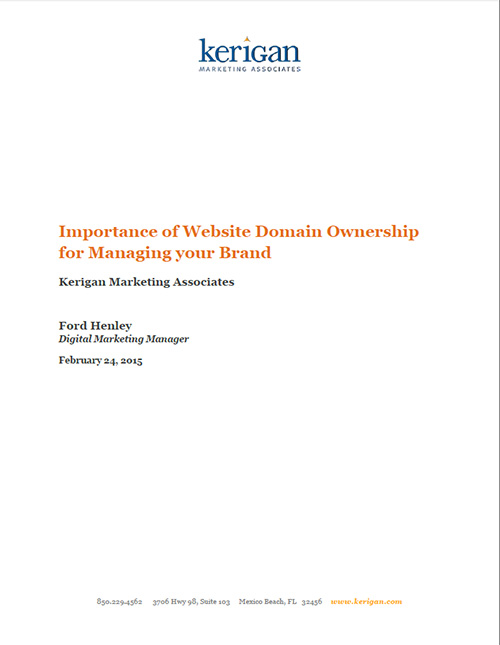 image of a whitepaper document about the importance of website domain ownership
