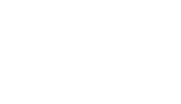 image of the Pinapple Willy's logo